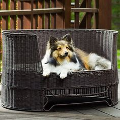 Have to have it. Indoor/Outdoor Bay Dog Bed
