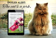 Dear Jane by Marissa Clarke for Entangled Publishing
