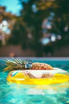 Look at this pineapple. | This Extremely Chill Pineapple Is Living Your Best Life