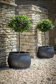Big gardening pots large planters garden pot company a quick guide Outdoor Flowers, Outdoor Planters, Garden Diy On A Budget, Garden Illustration, Front Yard Landscaping, Landscaping Ideas, Large Planters, Diy Garden Projects, Small Gardens