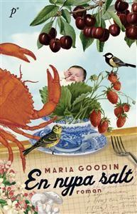 En nypa salt - Maria Goodin - Bok (9789197980340) | Adlibris Bokhandel - Alltid billigt, alltid fraktfritt