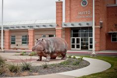 Image from http://ricesradicalsabbatical.com/wp-content/uploads/2011/04/20110407-hutto-hippos-2525.jpg.