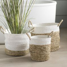 Discover the best wicker baskets for your beach home. Wicker rattan baskets and wicker crates can be used for decor and more. Find the best wicker basket decor ideas. Fabric Storage Bins, Fabric Bins, Storage Baskets, Laundry Baskets, Storage Organization, Joss And Main, Deco Cactus, First Apartment Decorating, Rattan Basket