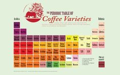 Actually, cultivars. Coffee cultivars are any variety produced by horticulture or agricultural techniques, therefore cultivated. In our…