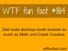 Is diet Soda healthy? - WTF fun facts (but i have to drink diet i cant drink normal soda :'() - lexi