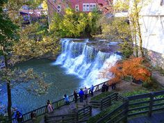 Our Zone: Chagrin Falls - Feel Green