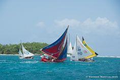 TGVT 2016, la voile traditionnelle enchante la Guadeloupe