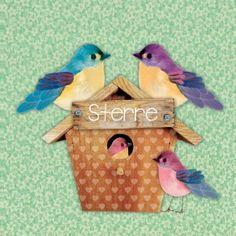 Geboortekaartje Sterre- Vrolijk kaartje met vogelhuisje, papa, mama en zusje vogel, leuk voor een tweede kindje - Petit Konijn