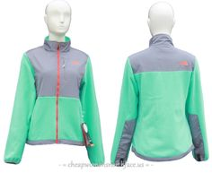 b3c81b9868a8 2014 The North Face Women s Denali Fleece Jacket Grass Green