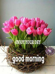 Morning Qoutes, Dress Neck Designs, Good Morning Wishes, Morning Images, English, Quote, Flowers, Quotation, English Language