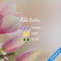 Understand the TOP 7 TEA TREE Oil BENEFITS. MELALEUCA DIY recipes With Tea Tree for its anti-viral compounds, Lemon to boost the immune system, and Lavender for peaceful sleep you can feel better by diffusing this blend. Essential Oils For Pain, Essential Oil Diffuser Blends, Essential Oil Uses, Doterra Essential Oils, Lavender Oil Benefits, Helichrysum Essential Oil, Cedarwood Oil, Oil Mix, Aromatherapy Oils