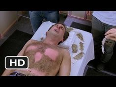 The 40 Year Old Virgin - Who's a hairy monkey?