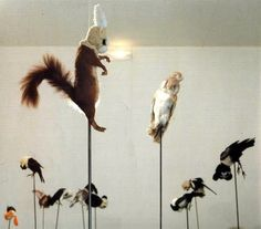 Taxidermy Annette Messager who uses both stuffed toys and taxidermized birds and animals in her work Soft Sculpture, Wall Sculptures, Art Picasso, Pompidou Paris, Base Image, Installation Art, Art Installations, Animal Projects, Land Art