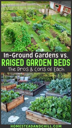 Explore the differences, potential drawbacks, and benefits of growing in raised garden beds vs in-ground gardening - to decide what style is best for you! Potager Bio, Potager Garden, Garden Landscaping, Magic Garden, Diy Garden, Raised Garden Beds, Raised Beds, Raised Gardens, Farm Gardens