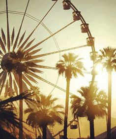 Palm trees, music, sun, and ferris wheel fun. Smells like Coachella spirit<3  #MissKL #MissKLCoachella