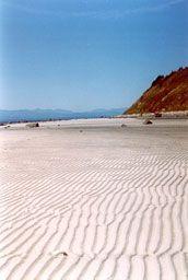 One of my favourite beaches, Savary Island BC Sunshine Coast Bc, Discovery Island, Vancouver Island, Travel Goals, South Beach, Aerial View, British Columbia, Where To Go, Beautiful Beaches
