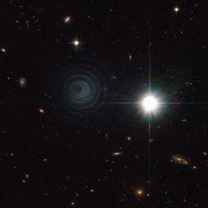 Nebulosa IRAS 23166 + 1655. Es una nebulosa pre-planetaria inusual alrededor de la estrella LL Pegasi, en la constelación de Pegaso. Su forma sigue un patrón espiral de regularidad asombrosa alrededor de la estrella, oculta detrás del polvo, puede ser un sistema binario. El patrón espiral sugiere un origen regular y periódico. El material se mueve hacia el exterior, se calcula que las conchas están separados. Tiene la apariencia de que alguien tiró una piedra en el tejido del espacio-tiempo.