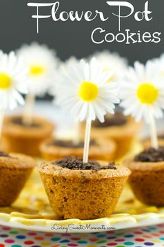 Flower Pot Cookies - Chocolate Chip Cookie cups filled with hazelnut chocolate and topped with crushed chocolate cookies. Welcome Spring with yummy cookies.  #Sp #NestleTollHouse #TollHouse