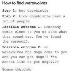 The Dogs would probably go away from the noise, but still
