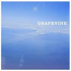 GRAPEVINE「風の歌」