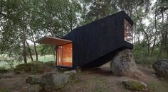 Forest wooden house
