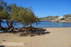 Santorini, Beaches, Greece, Relax, Europe, Island, Explore, Water, Travel