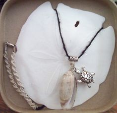 Olive shell with turtle charm necklace