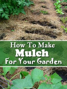 How To Make Mulch - for your garden... #gardening #homestead #homesteading