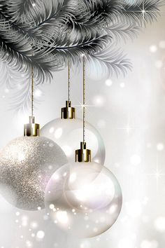 Merry Chrismast and Happy New Year Merry Christmas Wishes Cards Christmas Scenes, Noel Christmas, Christmas Wishes, Christmas Pictures, Winter Christmas, Christmas Bulbs, Christmas Decorations, Funny Christmas, Wallpaper Natal