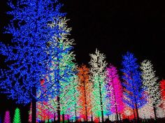 iCity – digital forest, Malaysia