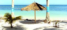 Anda: La Petra Beach Resort Leyte, Fine Sand, Bohol, Home And Away, Beach Resorts, Petra, Nice View, Philippines, Trip Advisor