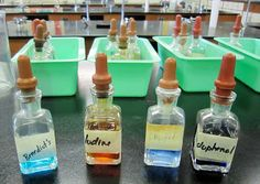 Science Stuff: Testing Foods for Organic Compounds