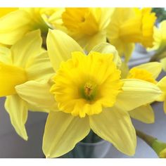 God påske alle sammen