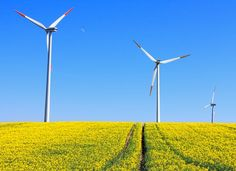 Awesome! 85% of Global Consumers Want More Renewable Energy. Are YOU one of them?