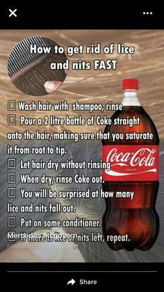 We have a selection of life hacks covering everything from cleaning to camping to health, and more. These really will be relevant in most folks' day to day lives. So, take a look at these twelve handy life hacks that everybody should know! Health Tips, Health And Wellness, Health And Beauty, Health Fitness, Health Benefits, Simple Life Hacks, Useful Life Hacks, 1000 Lifehacks, Lice Removal
