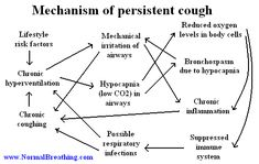 Mechanism of persistent cough and dry cough