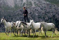 Lorenzo and his horses