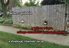 Very Funny Memes, Wtf Funny, Komodo Dragon, Old Memes, Good Mood, Best Memes, Nice View, Haha, Humor