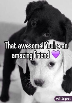 That awesome! You're an amazing friend