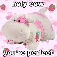 Fb Memes, Funny Memes, Cute Love Memes, Snapchat Stickers, Cute Messages, Wholesome Memes, Mood Pics, Animal Pillows, Loving U