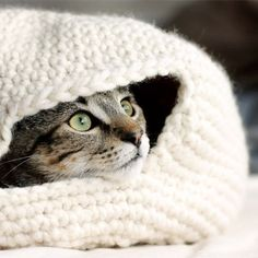 Free crochet pattern to make your cat a cozy nest for the winter.