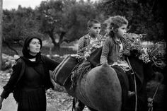"""Constantine """"Costa"""" Manos (born 1934 in South Carolina): Crete. Going home from the fields. """"A Greek Portfolio"""". Karpathos, Most Famous Photographers, Great Photographers, Greece Pictures, Greece Photography, Susan Sontag, Photographer Portfolio, Magnum Photos, Vintage Photographs"""