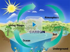 All About Carbon Dioxide | A Student's Guide to Global Climate Change | US EPA