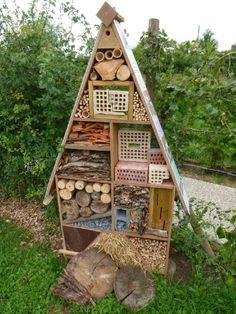Winteruitzending BiPS - De ecologische tuin | BIPS Biodiversité Périurbaine / Biodiversiteit in de Stadsrand