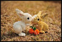 DSC_0088x | Flickr - Photo Sharing! Schfio
