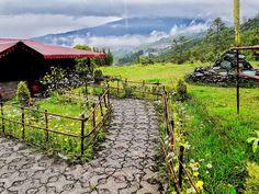 Ravangla welcomes u all with it's mesmerising view PC - Kinkini Chatterjee #Ravangla #Southsikkim #hindustan #india #bharat #nature