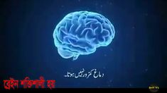islamic short film শিক্ষনীয় একটি ইসলামিক শর্ট ফ্লিম