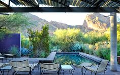 For the pool area of a desert home, Steve Martino planted palo verde, Agave weberi, and opuntia to conceal a driveway while showcasing the mountain views.
