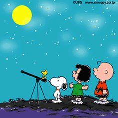 SNOOPY & WOODSTOCK~ STAR GAZING/Postcard