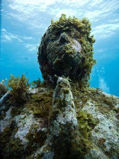 under water.........